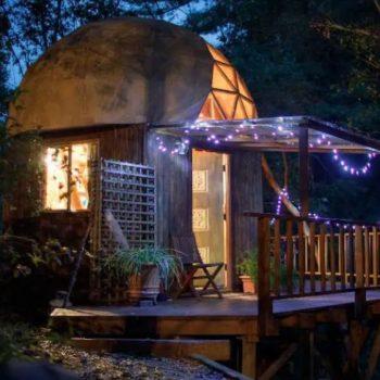 Тази малка къщичка в гората е най-популярният имот в Airbnb